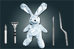 Save the Bunny
